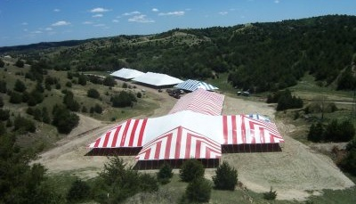 Image of 86 X red and white T tent with other tents